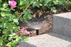 Foto: BGL. - In vielen Gärten sind längst auch automatische Bewässerungssysteme installiert, die zum Beispiel immer am frühen Morgen anspringen, wenn die Wirkung auf die Pflanzen am besten ist.