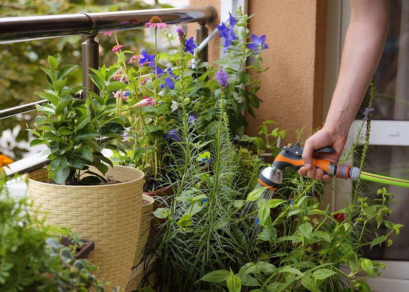 Garten Handbrause Für Gartenschlauch Brandson Gartenbrause 7 Sprühprofile