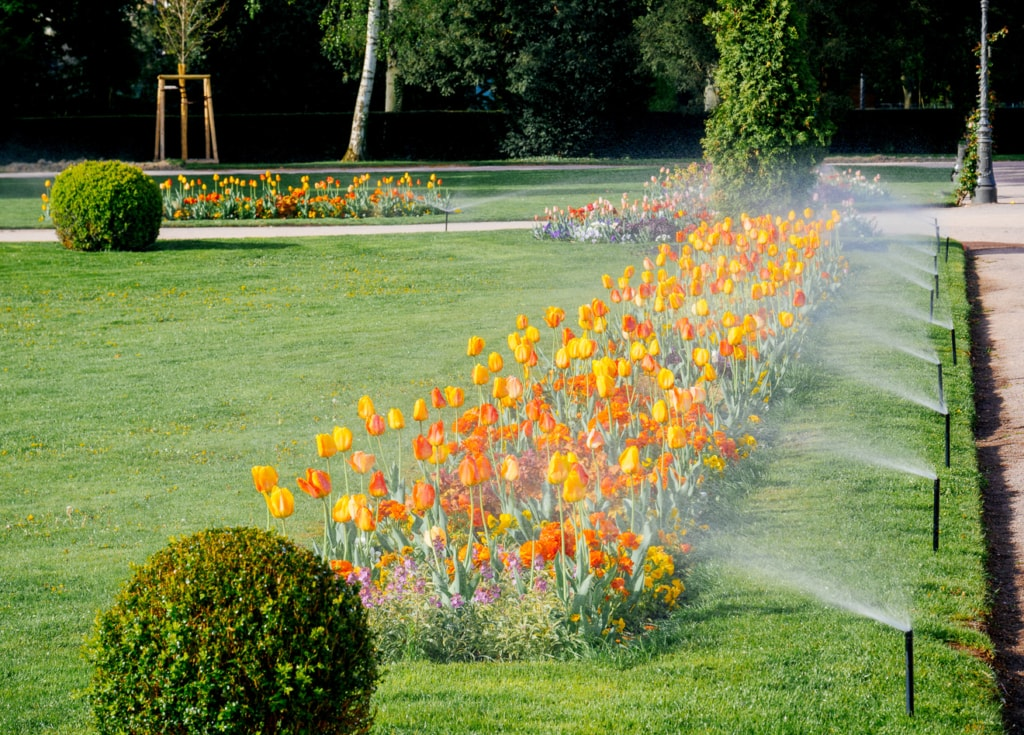 Versenkregner für die automatische Bewässerung eines Blumenbeetes