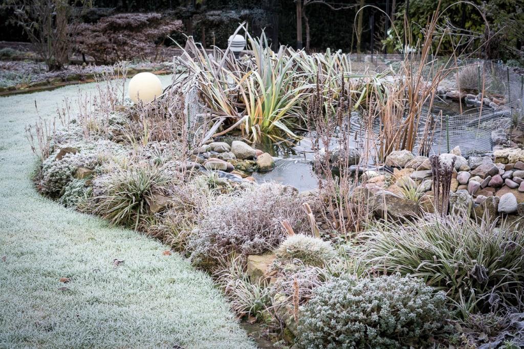 Teich vor Frost schützen